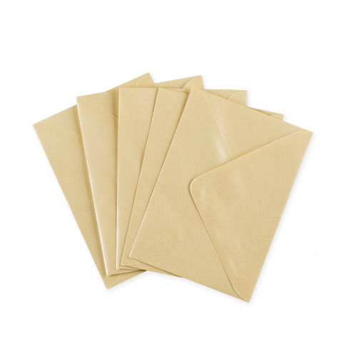 C6 Pearl Champagne Envelopes
