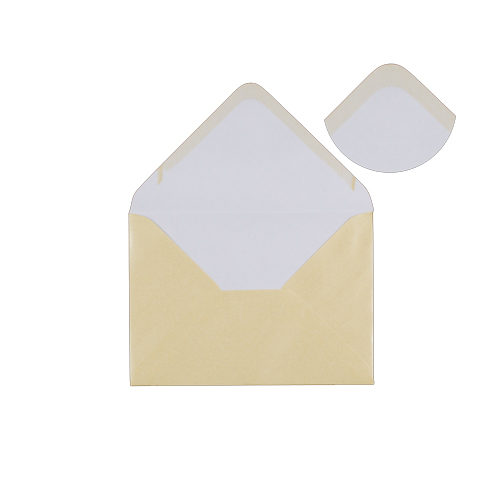 PEARLESCENT CHAMPAGNE 70 x 100mm ENVELOPES (i2)