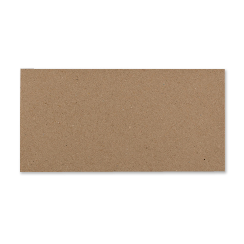 DL RECYCLED FLECK KRAFT ENVELOPES