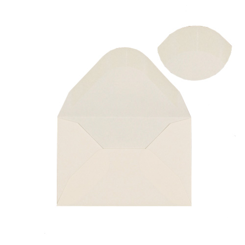 IVORY 60 x 90 MM GIFT TAG ENVELOPE (i1)