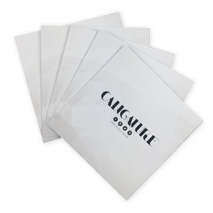 Printed Gummed Envelopes