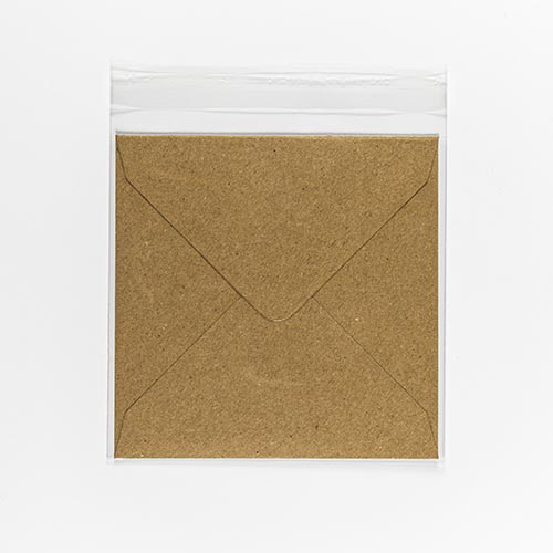POLY SLEEVE BAGS to fit: 140 mm Square (SELF ADHESIVE)