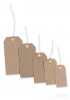 MERIT STRUNG TAGS 70 x 35mm (Pack of 20)